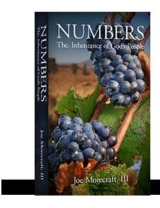Numbers Sermon Series